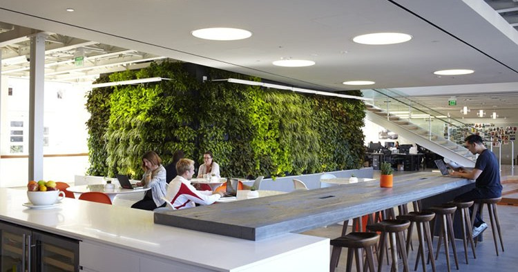 Modern Office Design Trends That Keep Employees Pleased