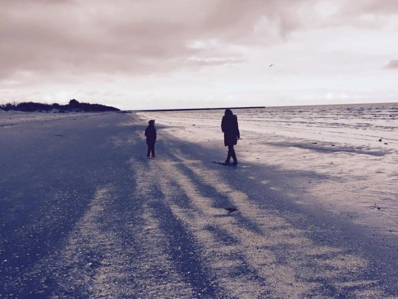 Palme stranden Frederikshavn