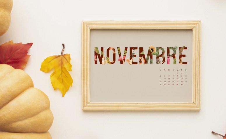 Calendrier Novembre 2019 à télécharger