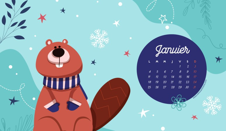Calendrier de Janvier 2021 (Freebies & Printable)