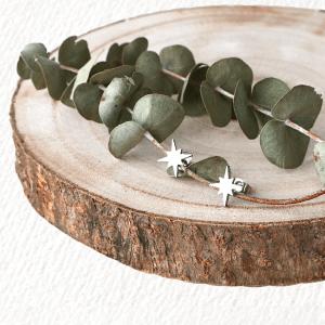 pendientes edelweiss