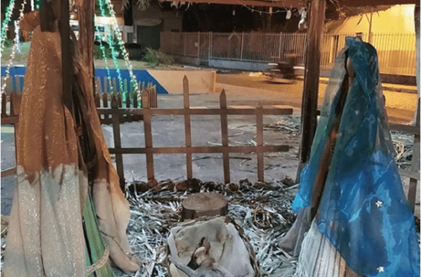Perrito callejero es encontrado dormido en un pesebre