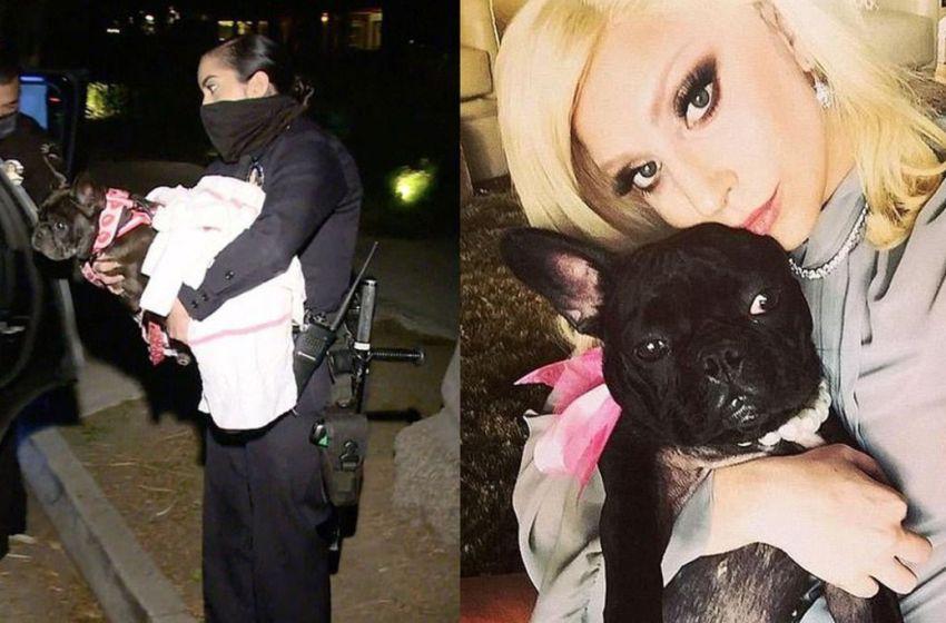 Lady Gaga ofrece 500 mil dólares a quien devuelva a sus perros  que le fueron robados