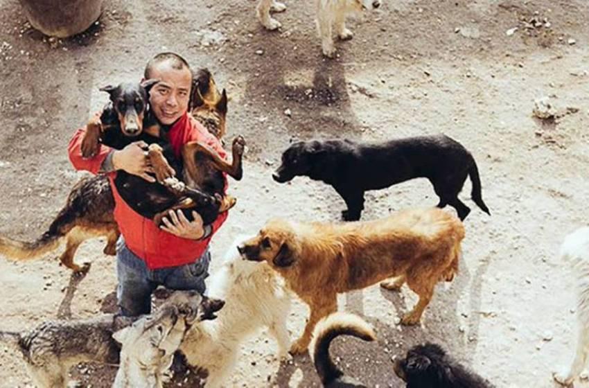 Empresario millonario gasta su fortuna salvando perritos de la calle
