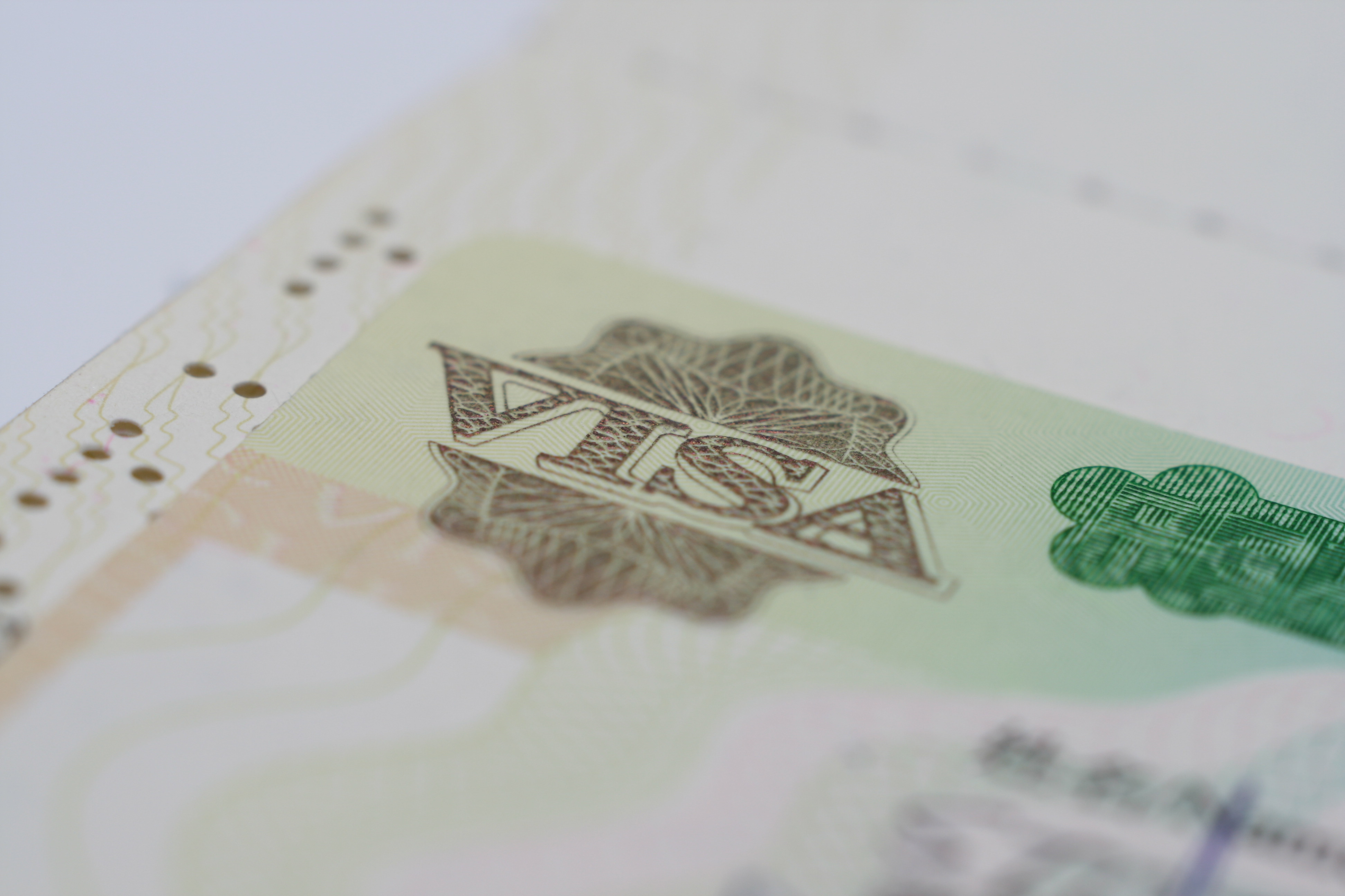 Visa and Passport Technical Problems May Cause Travel Delays