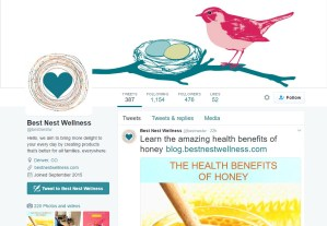 Best Nest Wellness Twitter profile