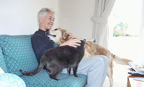 Man relaxing with dog and cat