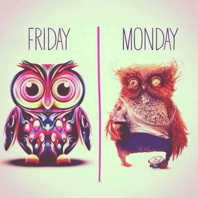 Friday | Monday