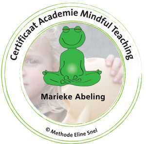 Certificaat Academie Mindful Teaching