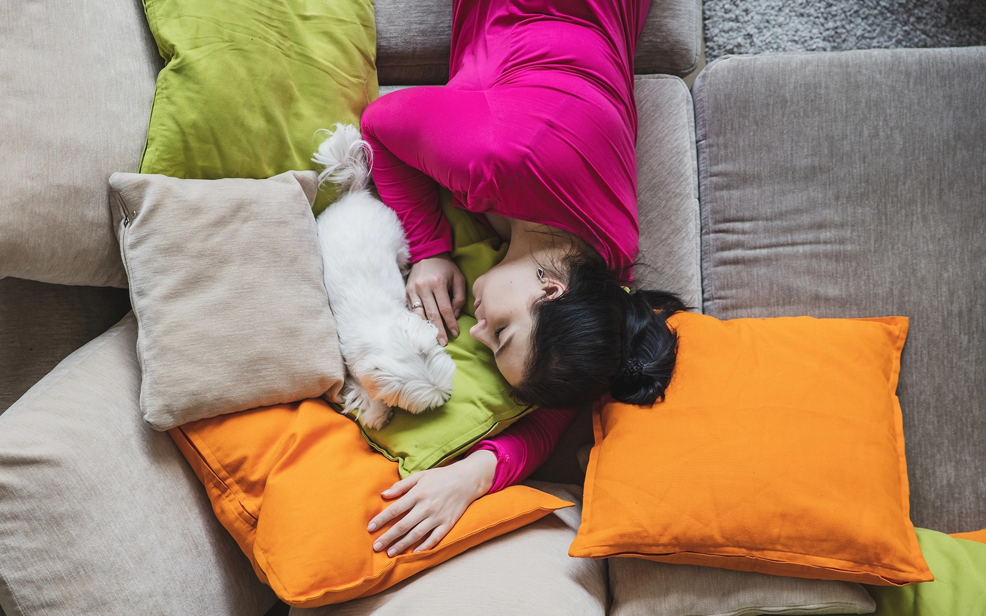 Woman is sleeping with her dog on the couch with colourful pillows. Photo taken from above.