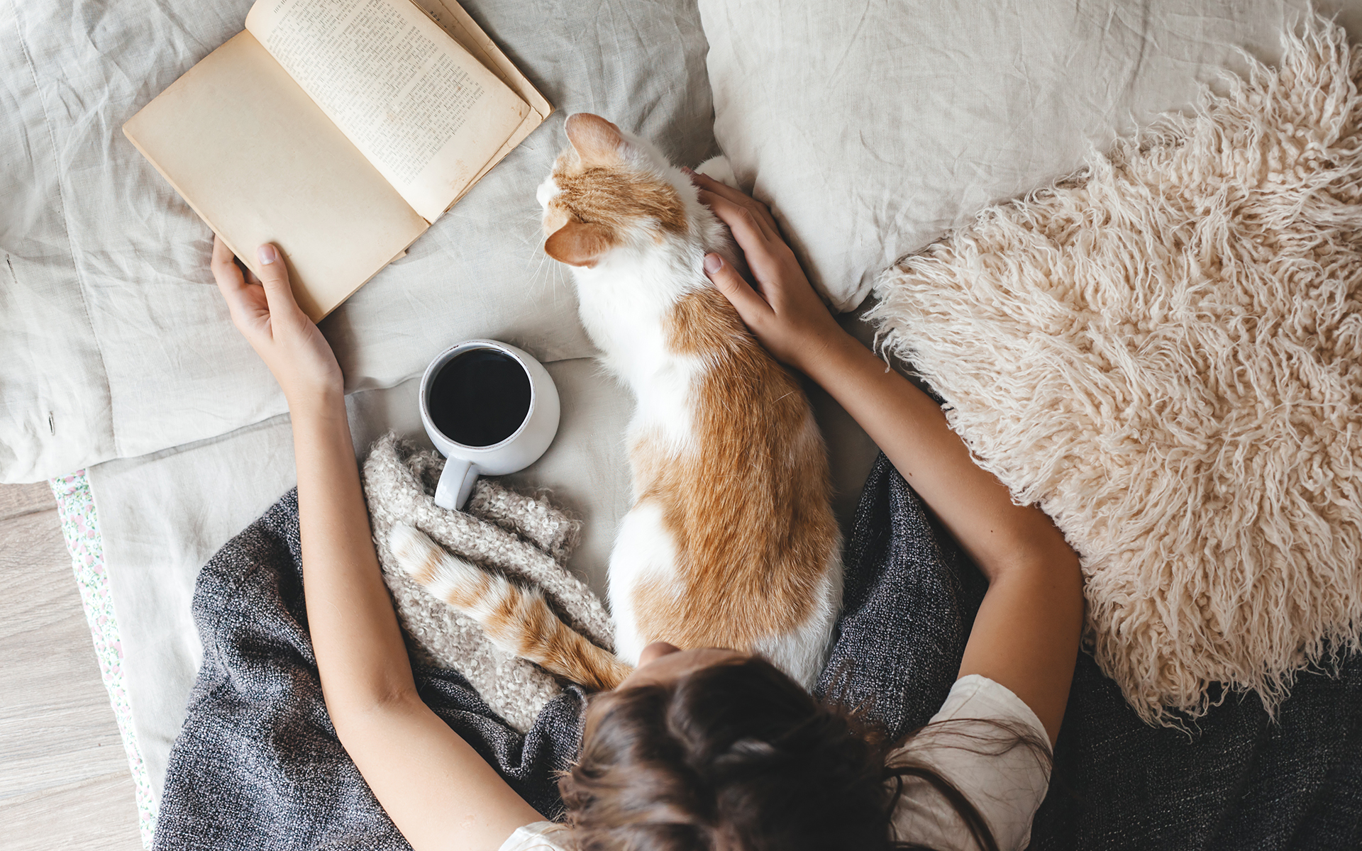 Mindful Books and Podcasts to Curl Up With This Fall - Cat, book and coffee in a bed.