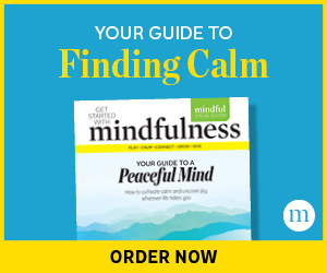 Your Guide to Finding Calm—Order Today
