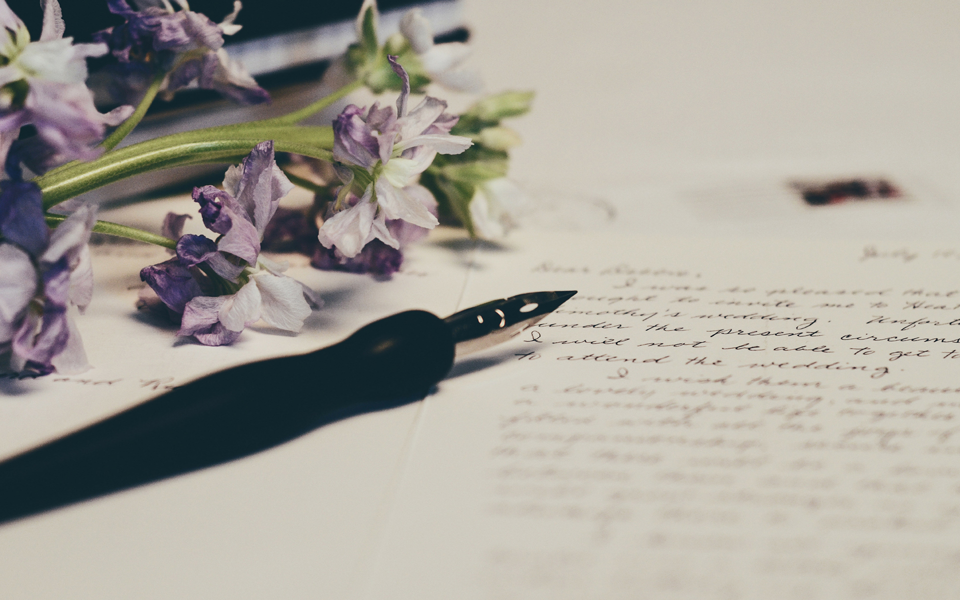 calligraphy pen and paper beside flowers