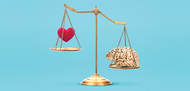 weighing heart and brain on scale