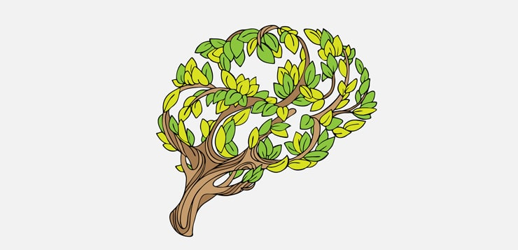tree and leaves in the form of a brain
