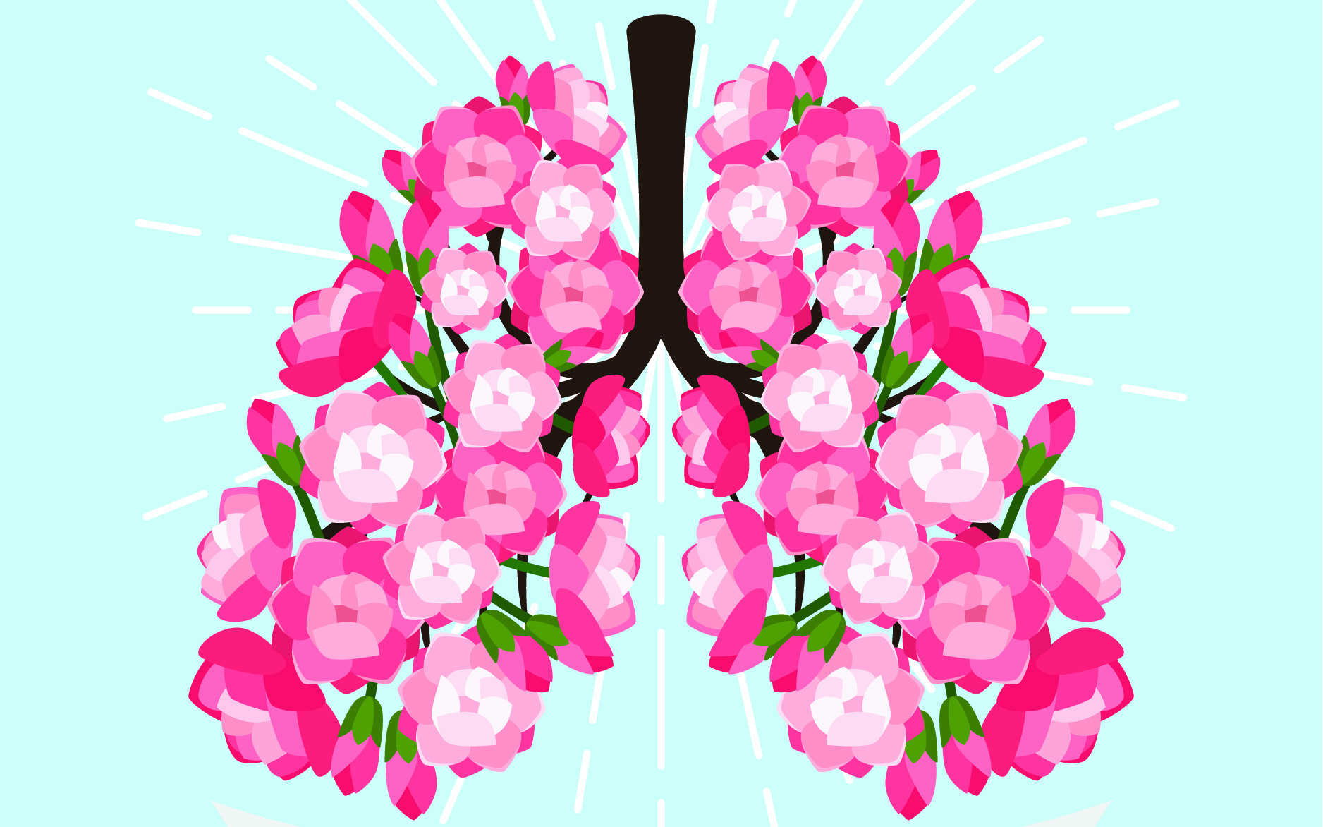 Blooming lungs - meditation begins with the breath
