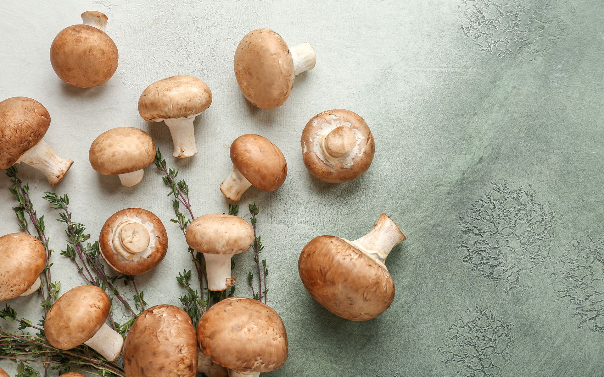 Cooking with Mushrooms -Fresh mushrooms with thyme on color table