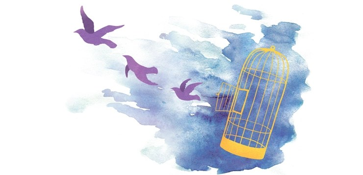 birds flying out of cage