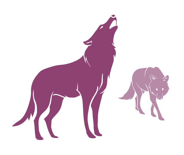 illustration wolves
