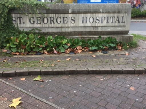 Welcome to St George's Hospital.