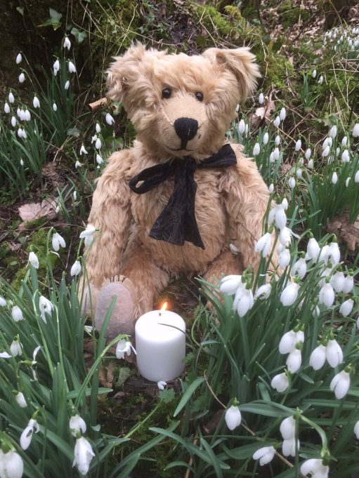 Snowdrops: Lighting a Candle to Diddley at Cherington Lake
