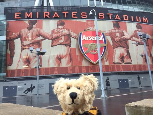 Sutton United: Bertie outside the Arsenal Emirates Stadium