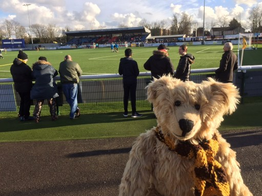 Sutton United: Watching the match.