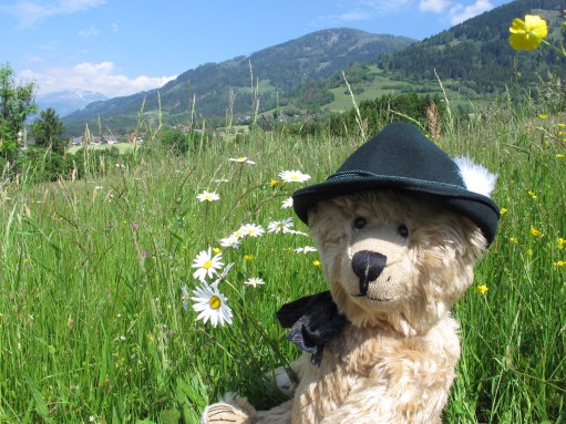 Austria: For bears.