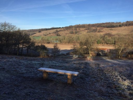 The Bench: A frosty.morning in February.
