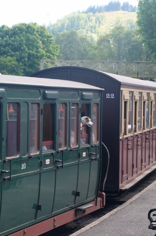 Great Little Trains of Wales: His Masters Voice.