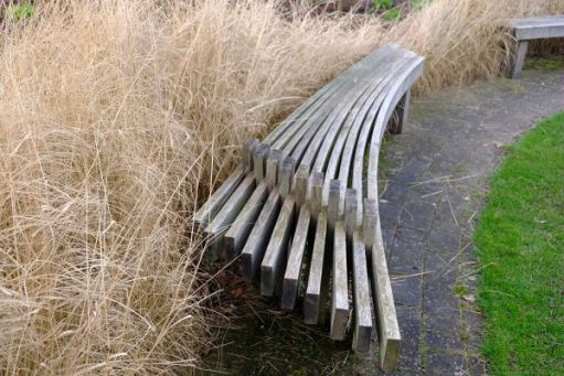 Just Two Hours: Bench and grasses.