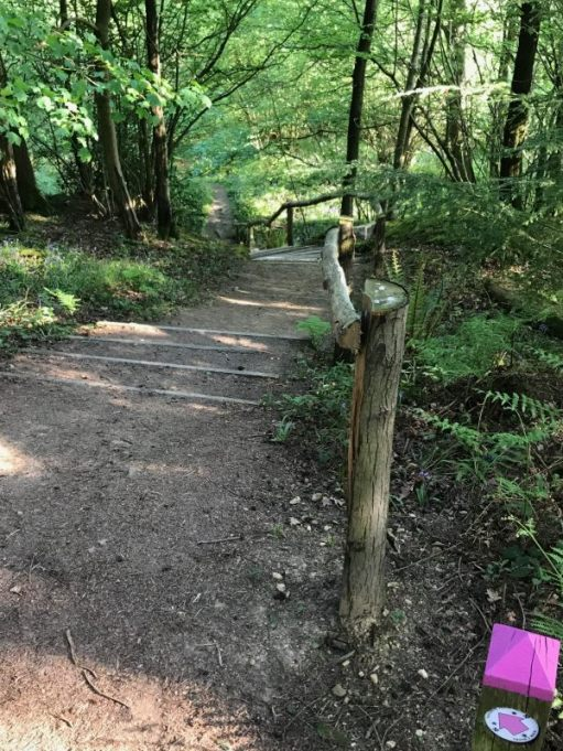 Frank's Walk: They did warn it was steep!