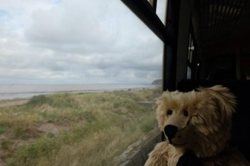 From a Railway Carriage: I love steam trains too.