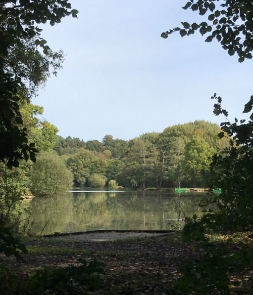 Over the Hills and Far Away: Old Bury Hill fishing lake.