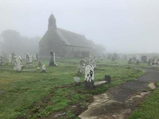 Tick tock. Love in a mist. Whitland Church, Pembrokeshire.