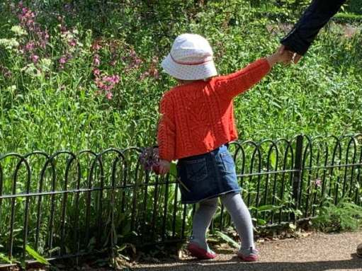 Picture of a young child holding an adult's hand, but pulling away to look at the wild flowers.