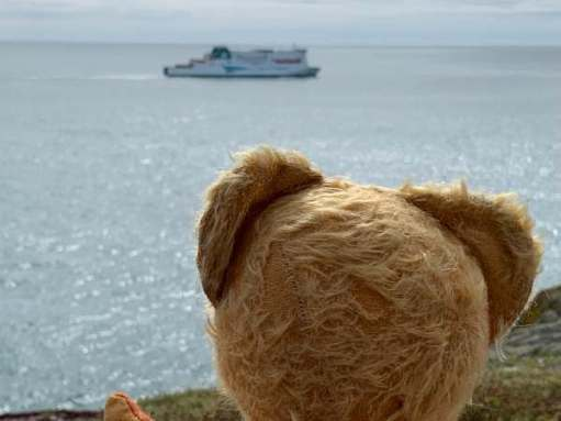 Looking out to sea, a big ship approached. The Irish Ferry to Rosslare.