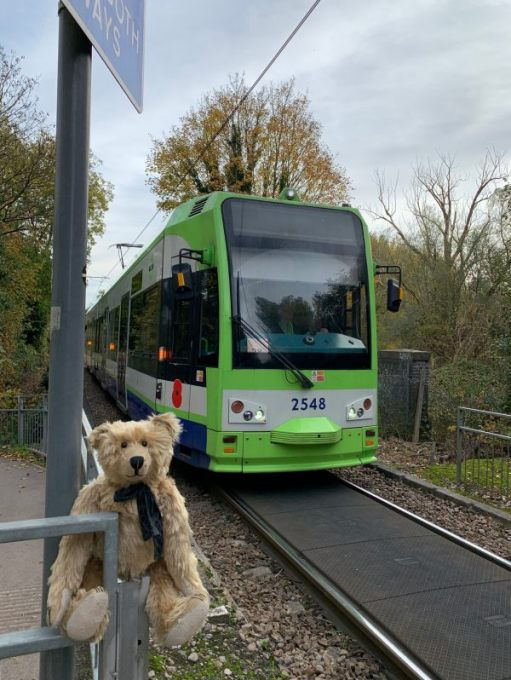 Croydon Tram no 2548 on the tramway in Morden Hall Park.