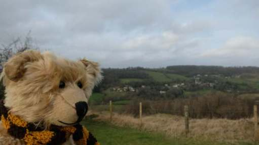 Bertie, on the left of the picture, looking over the view from Swift's Hill.