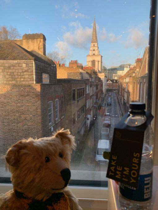 """Bertie in the window of room 311. The view of Fournier Street leading to Christ Church in the background. Next to Bertie is a bottle of water with a label saying """"Take me, I'm yours""""."""
