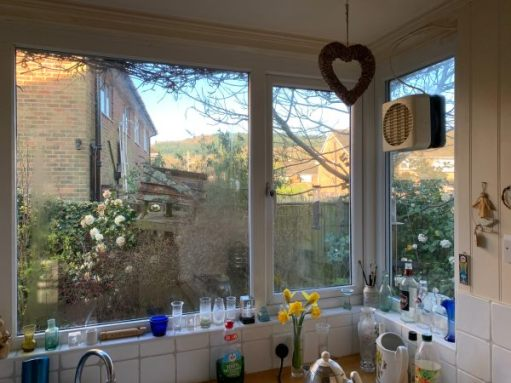 View through the kitchen window.