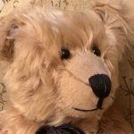 Head shot of Bertie.