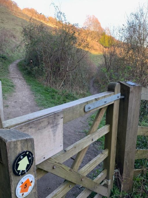 A wooden gate across the path. Way marker post No 5 on the left.