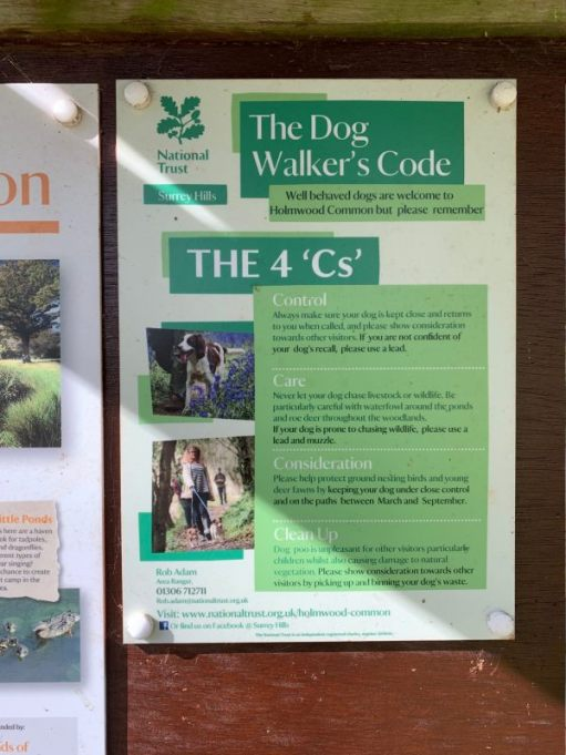 Dog Walker's Guide on the notice board at Holmwood Common.