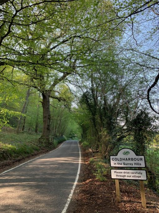 Leafy tree-lined country lane and the road sign for Coldharbour.