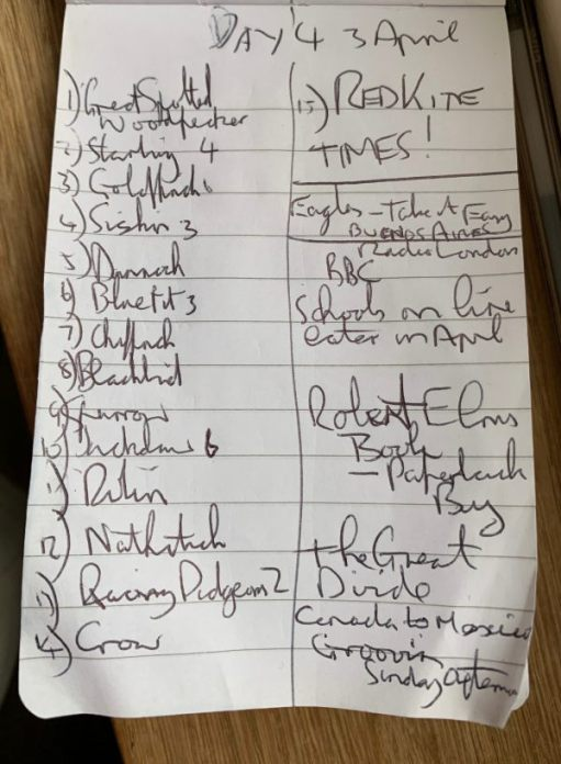 Bobby's list of observations from 3 April, which includes a Red Kite.