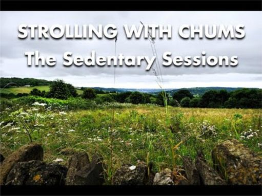 Another sedentary session: Cotswolds Choice by Frank Mansell (click on the picture for video).