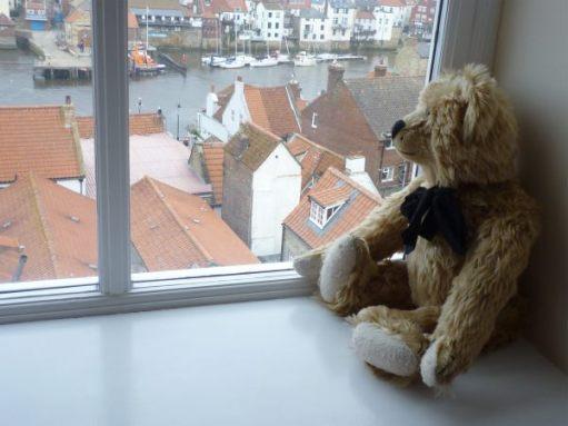 Bertie in the bedroom window overlooking Whitby Harbour.
