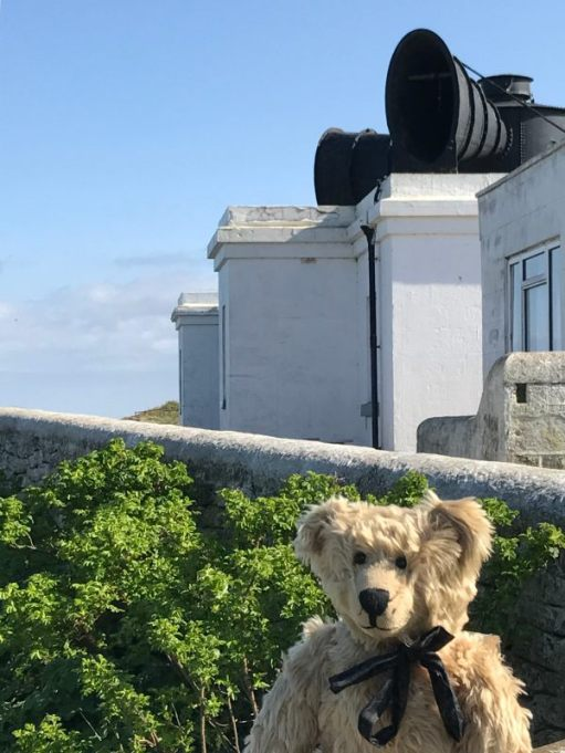 Bertie in front of the Whitby Lighthouse foghorns.