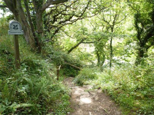 Narrow pathway at Hayburn Wyke.